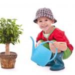 Little gardener boy — Stock Photo