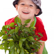 Royalty-Free Stock Photo: Little gardener boy