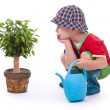 Little gardener boy — Stockfoto