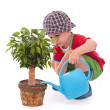 A boy with a watering-can — Stock Photo