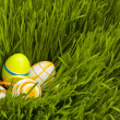 easter eggs — Stock Photo #7518353