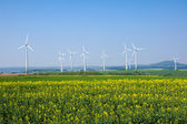 Windwheels in rural Germany — Stock Photo