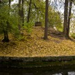 Pond in autumn park — Stockfoto