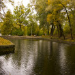 Pond in autumn park — Stock Photo