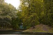 Sonbahar park su birikintisi ada — Stok fotoğraf