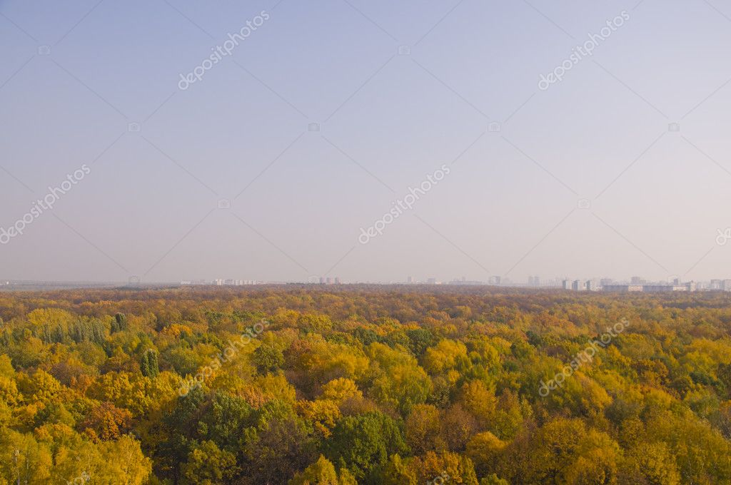 Panorama Park Fall woo Moscow with the Ferris wheel. — Stock Photo #7211684