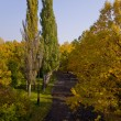 Royalty-Free Stock Photo: Panorama of the autumn park