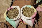 Coffee beans, Ethiopia — Stock Photo