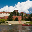 Wawel Royal Castle. — Stock Photo #7143273