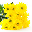 Beautiful bouquet of yellow chrysanthemums — Stock Photo