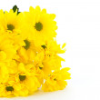Beautiful bouquet of yellow chrysanthemums — Stock Photo #6757791