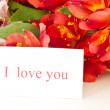 I love you — Stock Photo #6902721