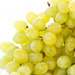 Royalty-Free Stock Photo: Grapes