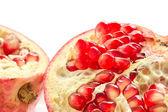 Pomegranate — Foto Stock