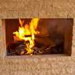 Stock Photo: Wood-burning