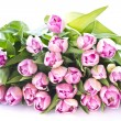 Tulips — Stock Photo #7236188