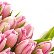 Tulips — Stock Photo #7308935