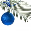 New blue ball on palm-branch — Stock Photo #7861120