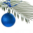 New blue ball on the palm-branch — Stock Photo
