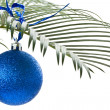 New blue ball on palm-branch — Stock Photo #7861131