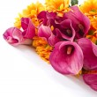 Bouquet of calla lilies and orange chrysanthemums — Stock Photo #7861168