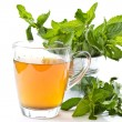 Green tewith mint — Stock Photo #7865752