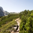 Hike path — Stock Photo