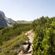 Stock Photo: Hike path