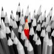 leiderschap concept - bos van grijze potloden met rode — Stockfoto