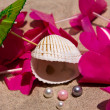 Seashell, Pearls, Umbrella And A Lei — Stock Photo