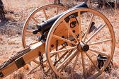 Revolutionary Cannon — Stock Photo