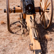 Revolutionary Cannon — Stock Photo