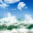 Birds flying over waves and blue sky — Stock Photo