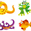 Fun collection of animals — Stock Vector #7511753