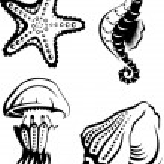 Sea Life — Stock Vector #7519933