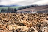 Brown soil — Stock Photo
