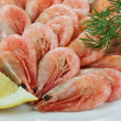 Boiled shrimp — Stock Photo