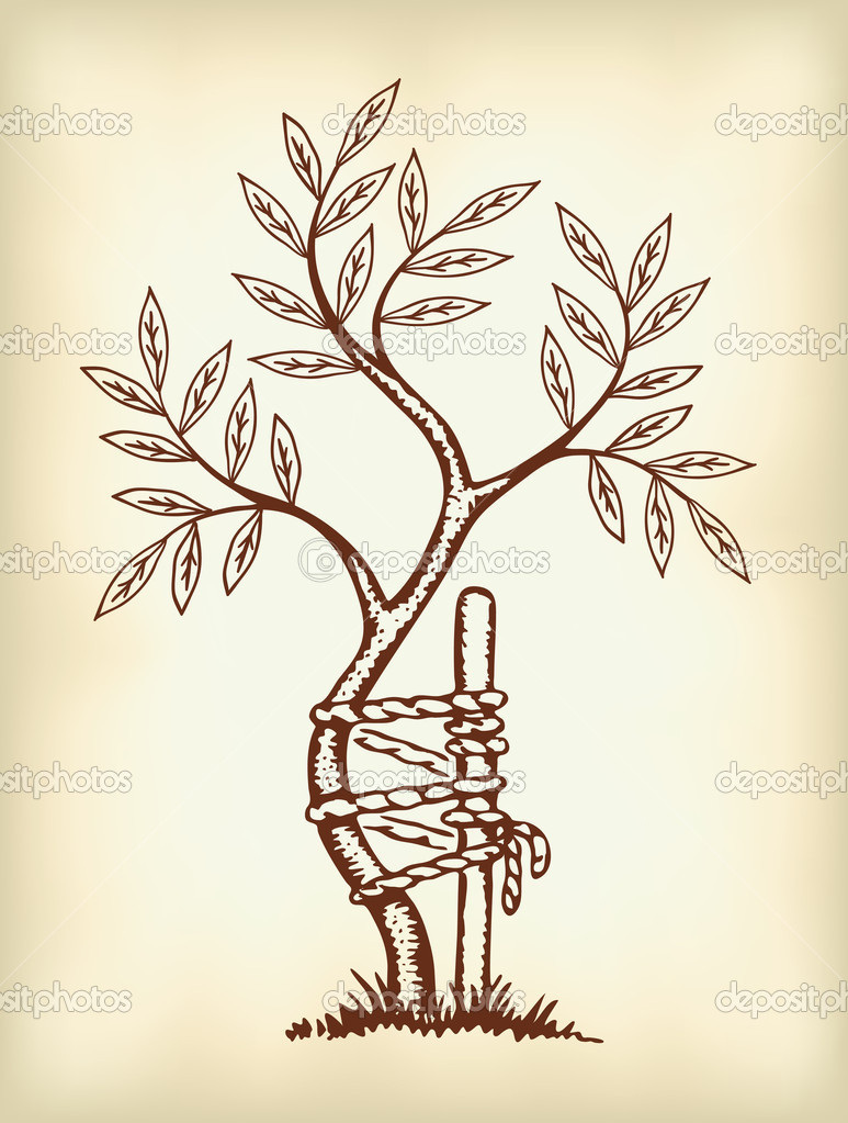 Orthopaedic Tree Symbol The symbol of orthoped...