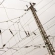 Foto Stock: Overhead contact wiring