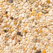Pebbles Background Texture Pattern — Stock Photo