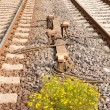 Sensor Devices between Railwaay Tracks — Stock Photo