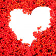 Mountain Ash Berries with white heart-shaped copyspace — Stock Photo