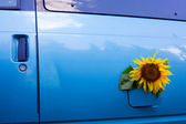 Bio-fuel concept — Stock Photo