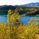 Emerald Lake at Carcross, Yukon Territory, Canada — Stock Photo