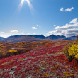 Alpine landscape in fall — Stock Photo #6908162