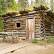 Old traditional log cabin rotting in Yukon taiga - Foto Stock