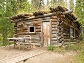 Old traditional log cabin rotting in Yukon taiga — Stock Photo