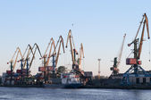 Bot and cranes in the seaport — Stock Photo