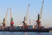 Cranes in seaport — Stock Photo
