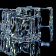 5 ice cubes macro 8 — Stock Photo